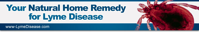 Lyme Disease Remedy Report